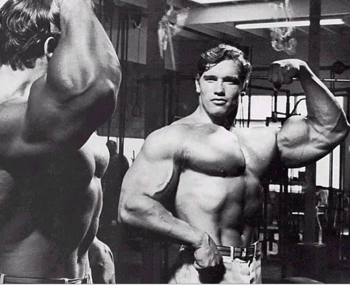 Arnold Schwarzenegger Biography 2019 – BiographON